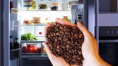 A pus boabe de cafea în frigider și nu i-a venit să creadă ce a urmat. Trucul secret pe care nu îl știe nimeni