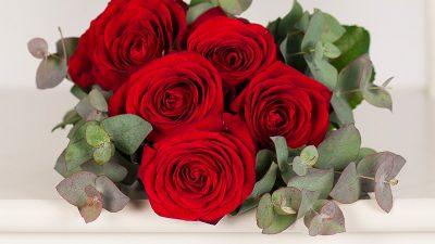 Cum prelungești viața trandafirilor ieftin și ușor. Cel mai tare truc pentru orice român