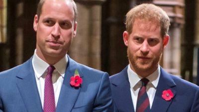 Ce se întâmplă între Harry și William înainte de omagiul Prințesei Diana. S-a aflat abia acum gestul lor