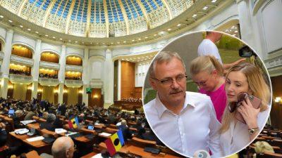 Ce se întâmpla când Irina Tănase apărea în Parlament. Iubita lui Liviu Dragnea era pe cai mari