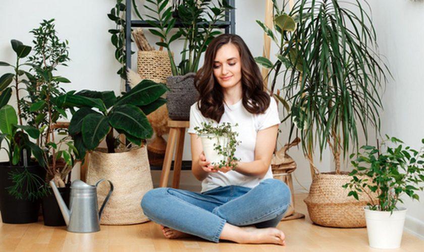 De ce este bine să-ți umpli casa de plante pe timpul verii. Mii de români deja au început să facă asta!