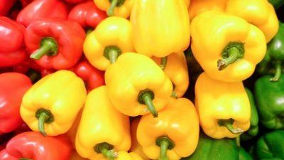 Substanțele care îți garantează o recoltă bogată de ardei. Truc secret direct de la producător