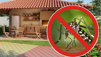 Trucul genial care ţine ţânţarii departe de casa ta. Ce trebuie să pui lângă fereastră sau în terasă