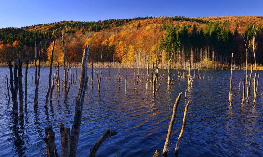 Un cutremur a dus la crearea unui lac de baraj natural, în Neamţ. Este chiar mai cunosocut decât Lacul Roşu