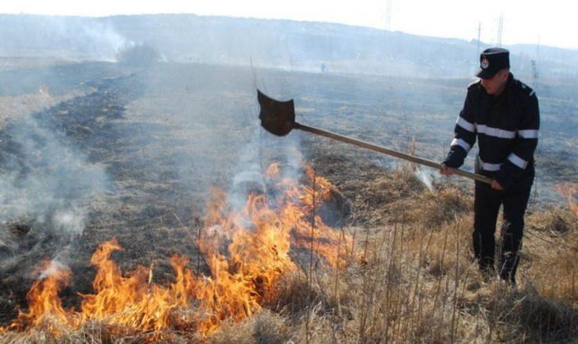 Ce amendă a primit un bărbat care a incendiat o zonă protejată, în Arad