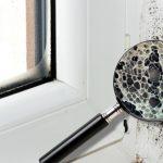 Ți-au mucegăit geamurile în casă? Ingredientul super ieftin care te scapă de problema asta