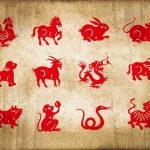 Zodiac Chinezesc: ce fel de femeie ești, în funcție de anul nașterii