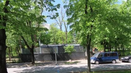 Dani Oțil își face terasă în parcul Herăstrău. Activiștii de mediu au sărit în capul vedetei tv. Cum a luat autorizație