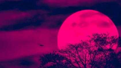 Luna Căpșună. Fiți cu ochii pe cer! Fenomen astronomic extrem de rar