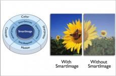 monitor, Philips, Philips 225BL2, PowerSensor, eco, ecologie, SmartImage, SmartTouch, hub USB, boxe audio, VGA, DVI, HDMI