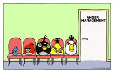 angry-birds-anger-management