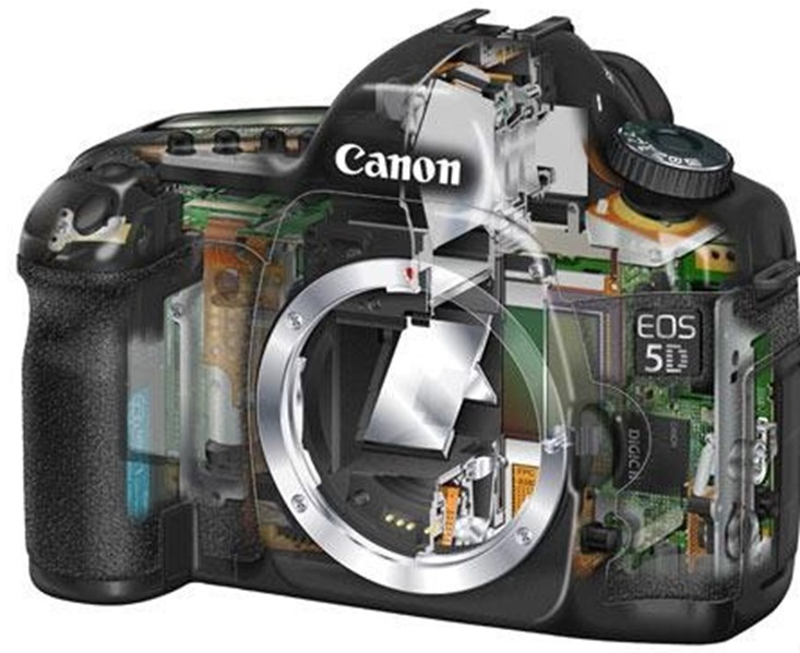 Canon_5D_Skeleton