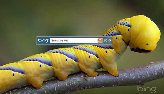 Microsoft Bing Search pe desktop, dar cu generozitate