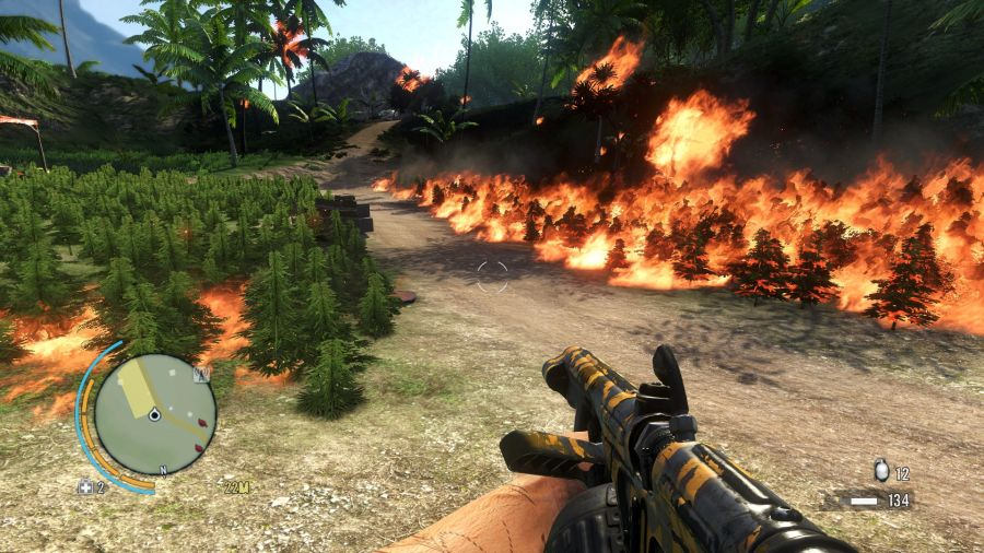Far Cry 3 flame