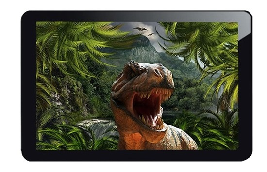 InfoTouch Raptor 10, 10.1 inch PLS MultiTouch