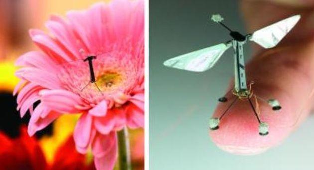 Drone Miniaturale
