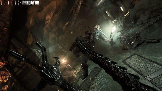 Alien vs Predator ar putea avea o continuare