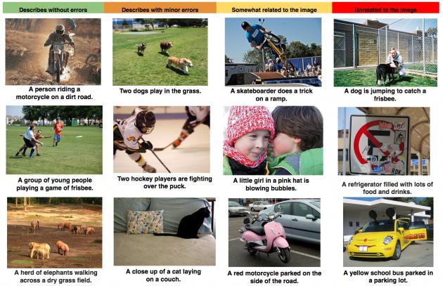 google images software recunoastere 2
