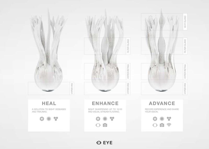 ochi sintetic