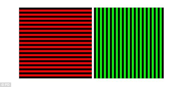 iluzie- foto 2