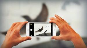 Cele mai bune poze surprinse cu iPhone îți arată că fotografia e mai mult decât selfie