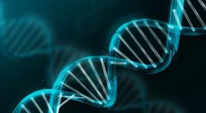 Genele care cauzează cancerul ar fi ajuns la oameni de la plante