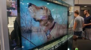 Cu soluția asta orice gadget devine rezistent la apă, chiar și un televizor [FOTO]