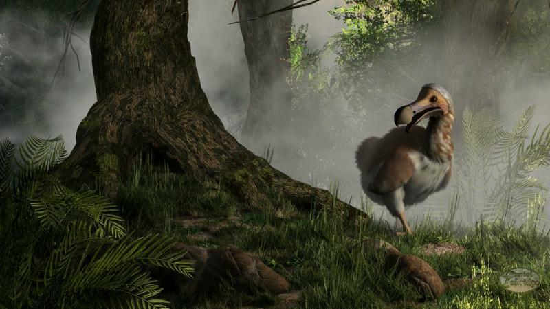 pasarea dodo