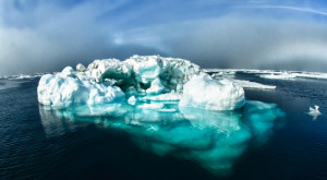 Noi detalii despre virusurile antice găsite în Arctic