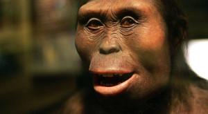Google o aniversează pe Lucy Australopithecus, unul dintre strămoșii noștri