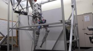 Acest robot aleargă mai bine ca tine, chiar dacă e doar o pereche de picioare mecanice