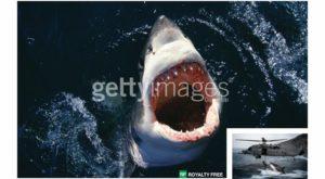 Google e responsabilă de piraterie, conform Getty Images