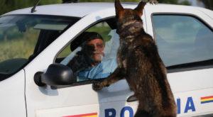 """""""Câini"""", unul dintre cele mai așteptate filme de acțiune românești, are un trailer"""