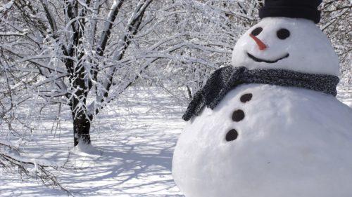 Cum arată cel mai mic om de zăpadă din lume