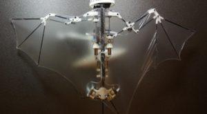 Bat Bot este un robot biomimetic care poate imita zborul liliecilor