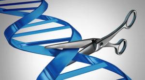 Modificarea genetică este posibilă, dar în condiții excepționale