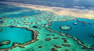 Ce sunt norii artificiali și cum ar putea salva Marea Barieră de Corali de la dispariție