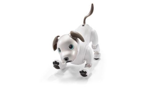 Cățelușul Aibo de la Sony este cel mai drăguț robot pentru casă