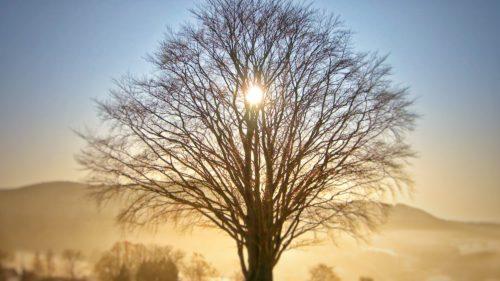 Solstițiul de iarnă 2017: tot ce să știi despre cea mai scurtă zi din an