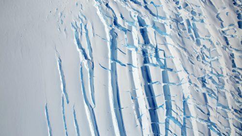 VIDEO Aceste sunete din Antarctica par rupte dintr-un film horror