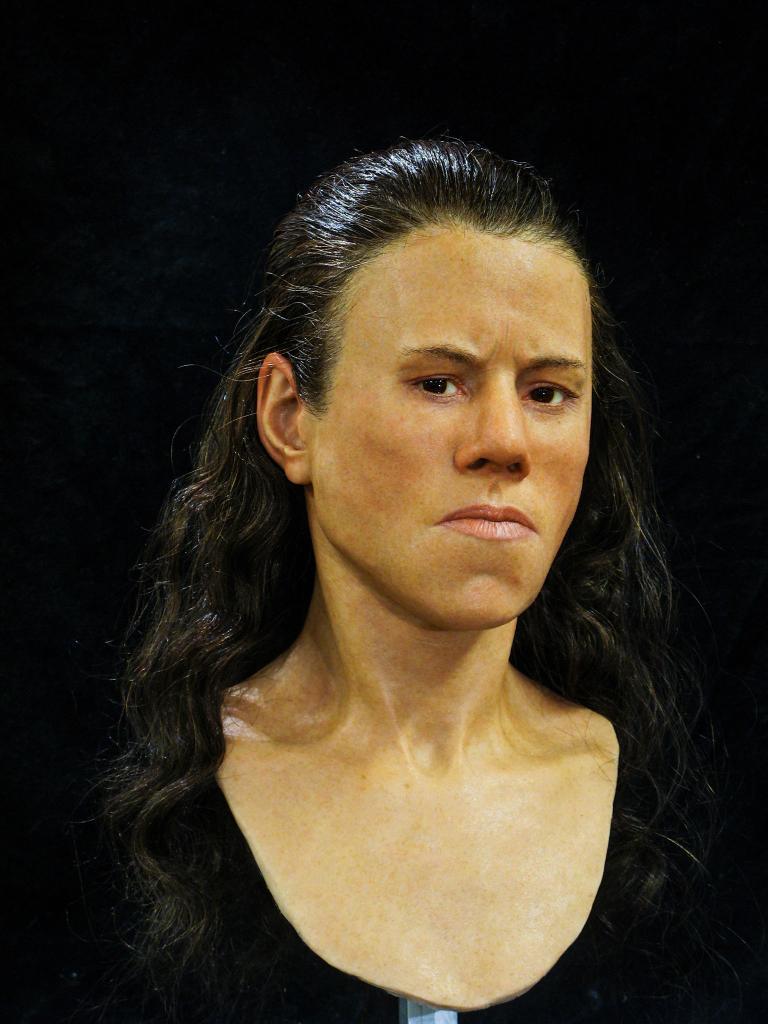avgi reconstrucție facială