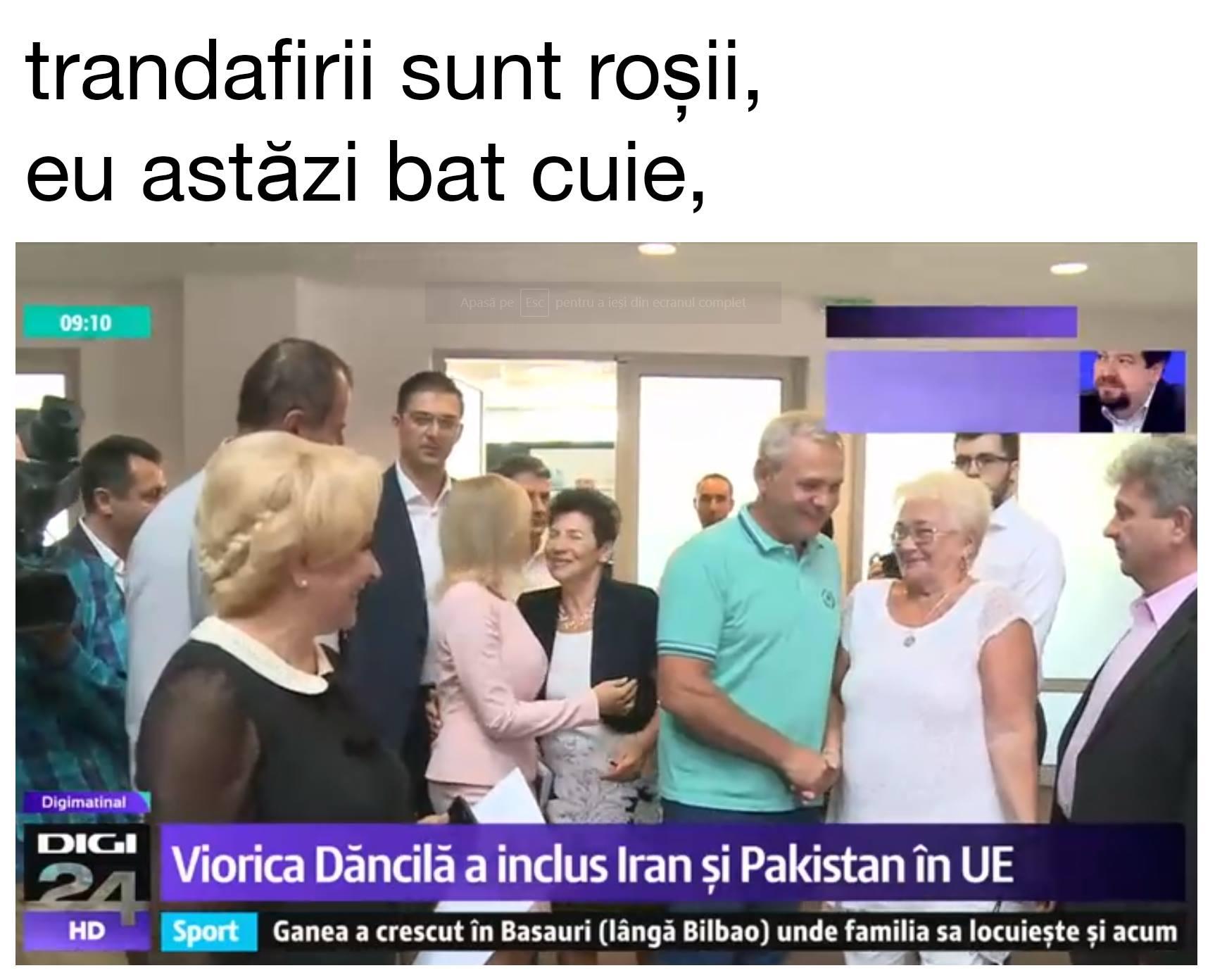 meme viorica dăncilă prim ministru românia 2