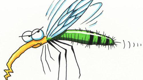 """Salvare pentru vară: poți să """"dresezi"""" țânțarii să nu te atace"""