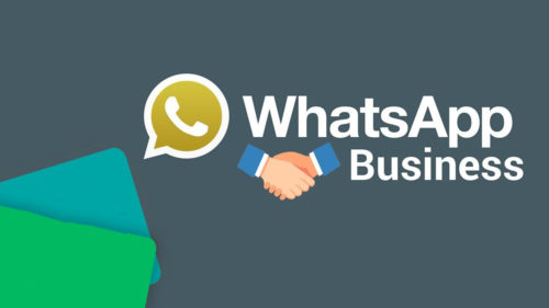 whatapp business
