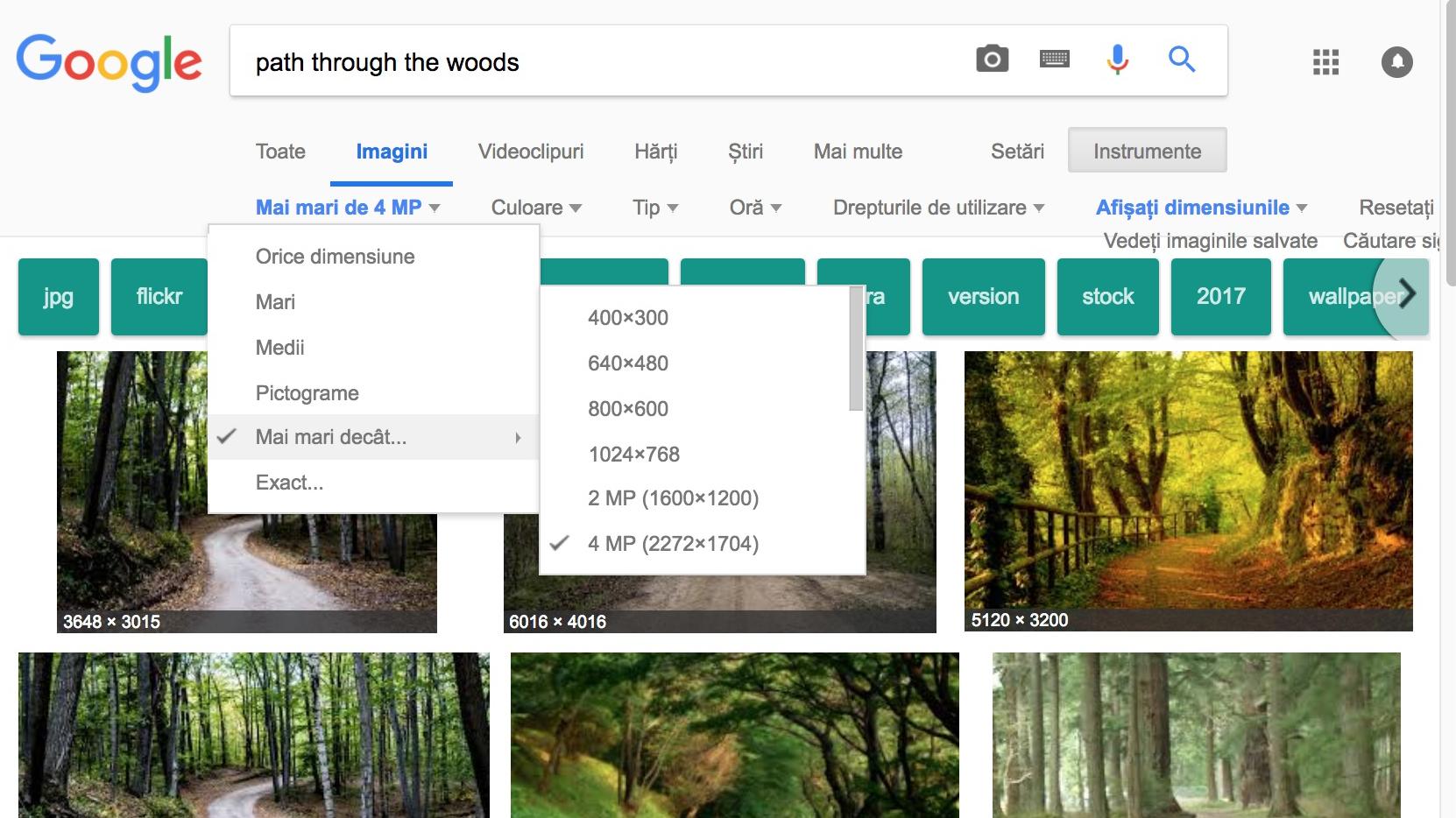 fotografii google