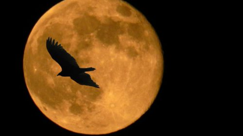 Cum s-a format Luna: teoria care dezleagă câteva mistere