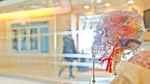 Iluzia optică ce îți arată adevărata capacitate a creierului uman