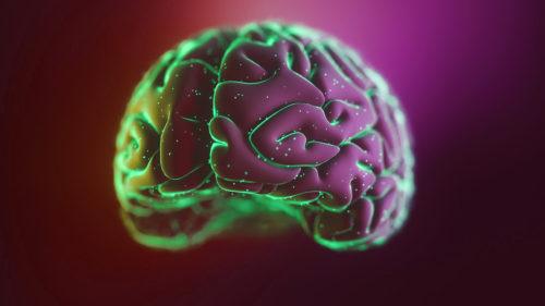 Noul experiment bizar: crearea unui creier în laborator