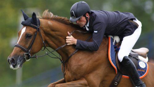 Cursele de cai sunt mai dăunătoare pentru animale decât credeai