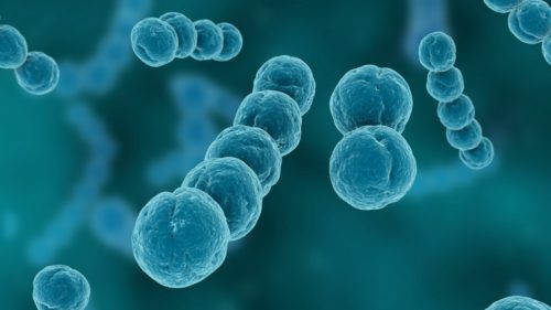Această proteină periculoasă și contagioasă a fost creată artificial